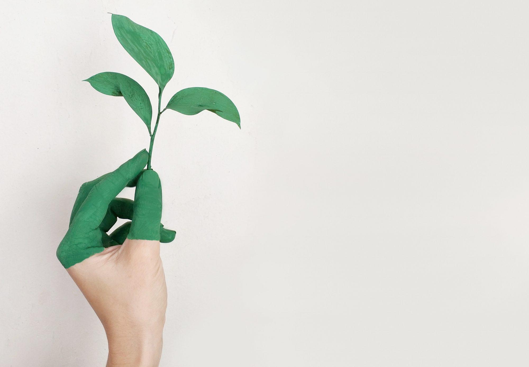 Eudaemon  - Promoting Human flourishing